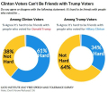 Cato poll friends w Trump voters