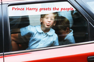 Prince Harry greets people